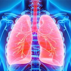 Функциональное дыхание